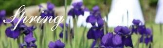springthumbs
